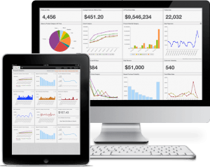 Business Intelligence Web Portal Basics