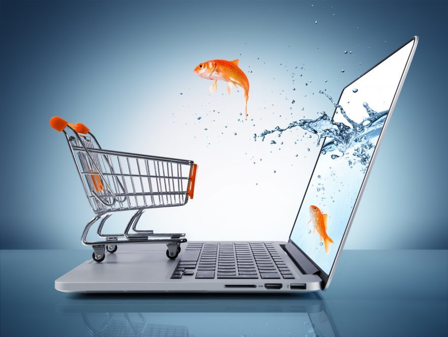 e-commerce fast facts